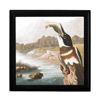 Audubon Kingfisher Bird Animals Wildlife Gift Box