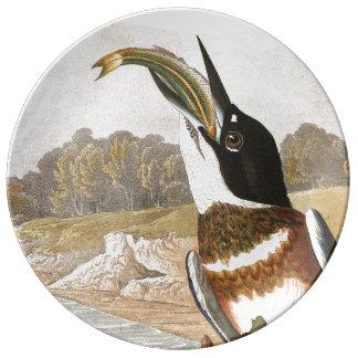 Audubon Kingfisher Bird Wildlife Porcelain Plate