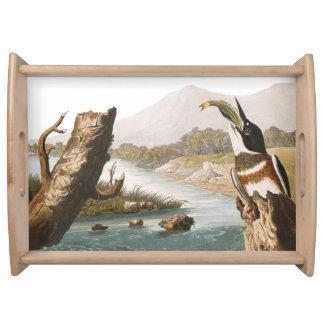 Audubon Kingfisher Bird Wildlife Serving Tray