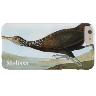 Audubon: Limpkin Barely There iPhone 6 Plus Case