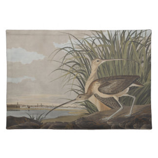 Audubon Long-Billed Curlew Sandpiper Bird Placemat