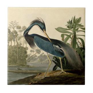 Audubon Louisiana Heron Tile
