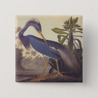 Audubon Lousiana Heron on Coastal Marsh Land 15 Cm Square Badge