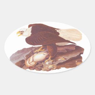 Audubon Majestic Bald Eagle with Fresh Fish Oval Sticker