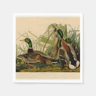 Audubon Mallard duck Bird Vintage Print Paper Serviettes