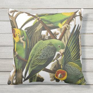 Audubon Parrots Outdoor Cushion