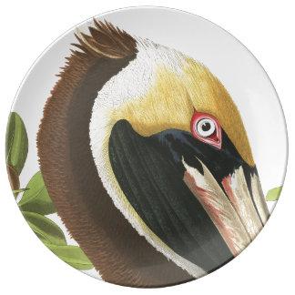 Audubon Pelican Bird Wildlife Porcelain Plate