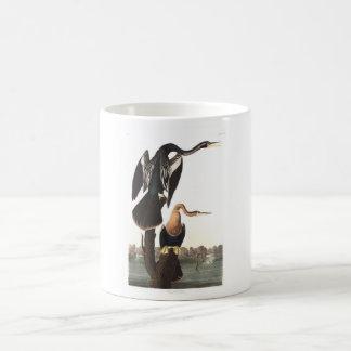 Audubon Plate 316 Black-bellied Darter Classic White Coffee Mug