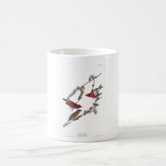 Audubon Plate 4 Purple Finch Classic White Coffee Mug