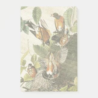 Audubon Robin Birds Nest Wildlife Post It Notes