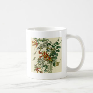 Audubon Ruby Throated Hummingbirds Mug