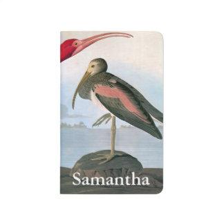 Audubon: Scarlet Ibis Journal