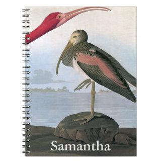 Audubon: Scarlet Ibis Notebook