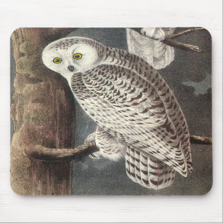 Audubon Snowy Owl Mousepad