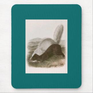 Audubon - Texan Skunk Mouse Mat