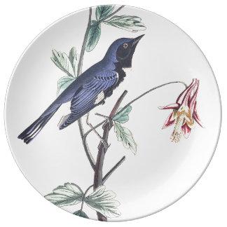 Audubon Warbler Bird Wildlife Porcelain Plate
