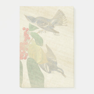 Audubon Warbler Birds Flowers Post It Notes
