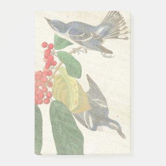 Audubon Warbler Birds Wildlife Post It Notes