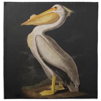 Audubon White Pelican Bird Vintage Print Napkin