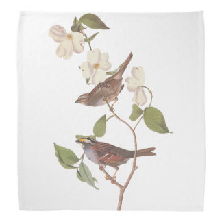 Audubon White Throated Sparrow Bird in Dogwood Kerchief