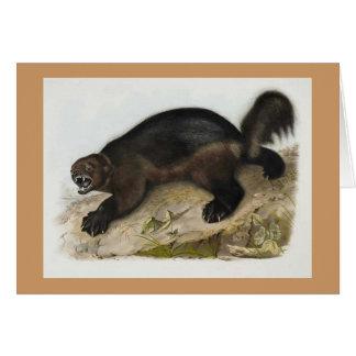 Audubon - Wolverine Card