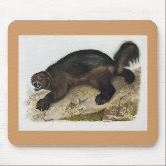 Audubon - Wolverine Mouse Mat