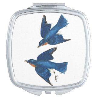 Audubons Bluebird Birds Wildlife Animal Compact Compact Mirror