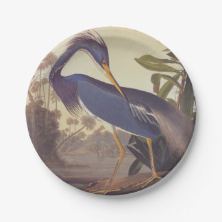 Audubon's Louisiana Heron or Tricolored Heron 7 Inch Paper Plate