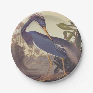 Audubon's Louisiana Heron or Tricolored Heron Paper Plate