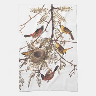 Audubon's Orchard Oriole Birds Nesting in Tree Tea Towel