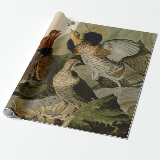 Audubon's Painting of a trio of Ruffed Grouse Wrapping Paper