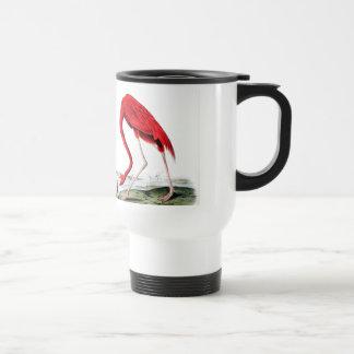 Audubon's Red Flamingo Coffee Mugs