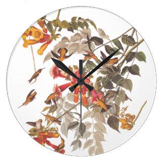 Audubon's Ruby Throated Hummingbirds with Flowers Large Clock