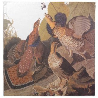 Audubon's Ruffed Grouse on Woodland Floor Napkin