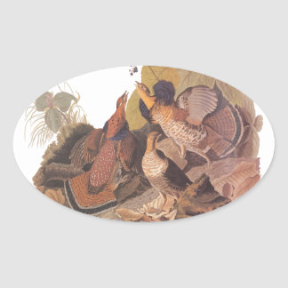 Audubon's Ruffed Grouse Oval Sticker