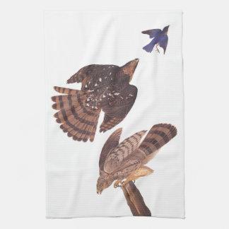 Audubon's Stanley's Hawks Hunting a Blue Bird Tea Towel