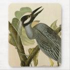 Audubon's Vintage Yellow crowned night heron paint Mouse Mat