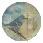 Audubon's Warbler Plate