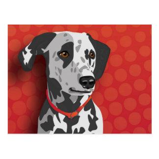 Augie the Dalmatian Postcard