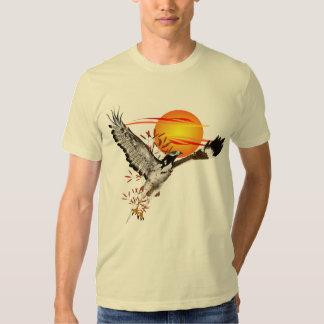 Augur meeting the morning sun. Shirts