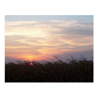 August Sunrise Postcard