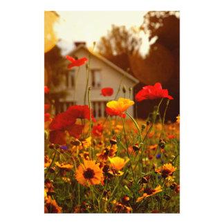 August wildflowers photo art