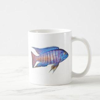"Aulonocara sp. ""peacock"" basic white mug"