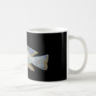 Aulonocara steveni male basic white mug
