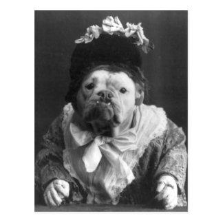 Aunt Maude Dog Post Card