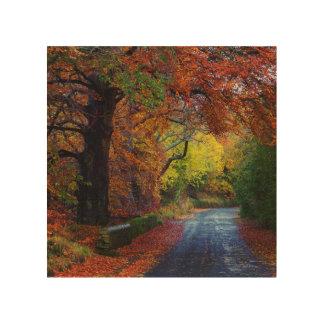 Auntmn landscape in Shotley Bridge, Consett Wood Print