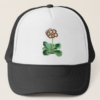 Auricula, Peter Campbell Trucker Hat
