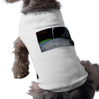 Aurora Borealis Doggie T Shirt