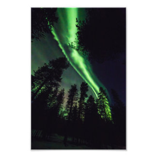 Aurora borealis in Finnish Lapland Photo Print