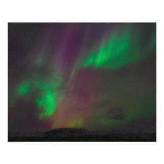 Aurora Borealis Northern Lights Trees Nature Lands 11.5 Cm X 14 Cm Flyer